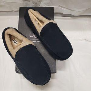 UGG Shoes - Men's UGG Ascot True Navy